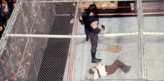 Mick Foley Fall From Hell in a Cell - What Really Happened
