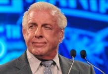 Ric Flair for governor?