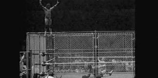 Wrestling at Madison Square Garden - Our Top 5 Moments