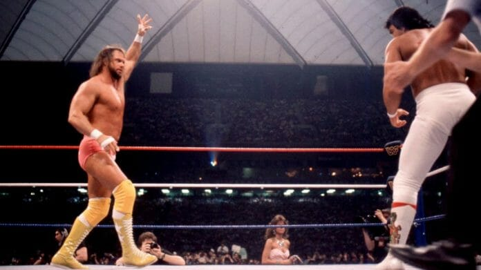 """The match between my brother """"Macho Man"""" Randy Savage and Ricky """"The Dragon"""" Steamboat at WrestleMania III ruined his life because he could never top it."""