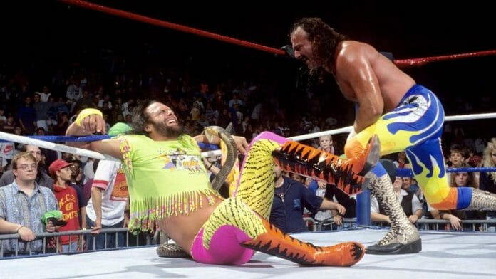 My brother Randy Savage, seen here being bit by Jake Robert's king cobra, put a lot on the line to entertain the fans. Randy got a 103-degree fever after the bite and the snake died soon after.