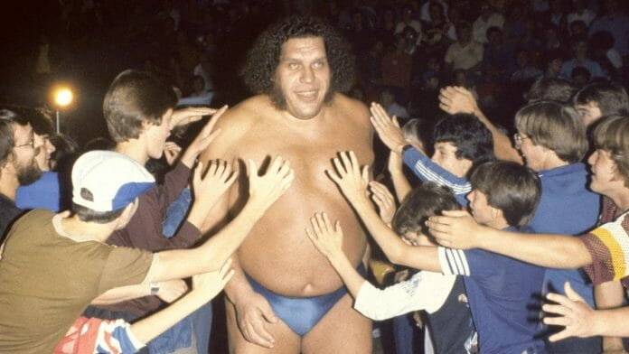 Even though he never became world champion, Andre the Giant was adored by fans worldwide and is arguably the most successful of the giants wrestling has ever had.