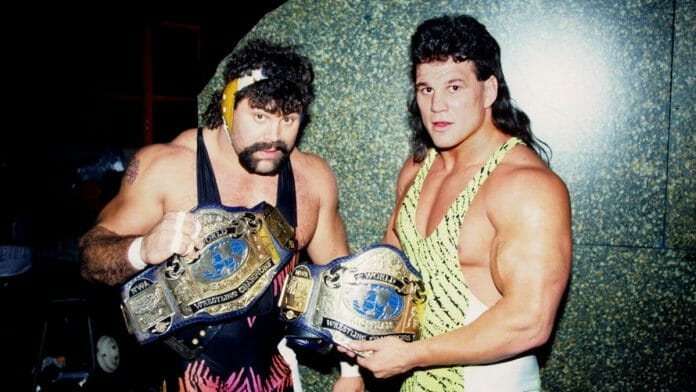WCW Tag Team Champions, The Steiner Brothers