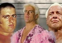 """""""Nature Boy"""" Ric Flair over the years."""