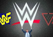 Take a stroll down memory lane and look at the story of the WWF/E logo's evolution!