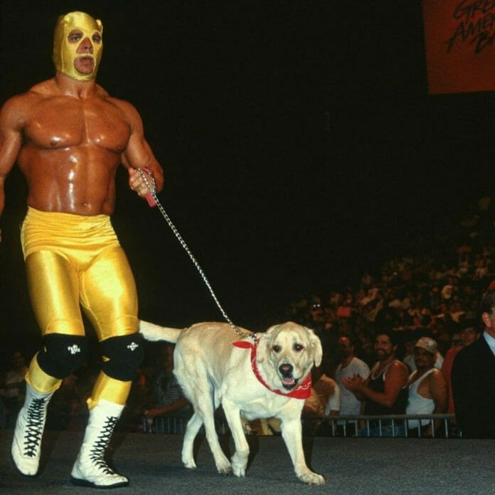 """Yellow Dog"" Brian Pillman."